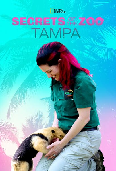 TV ratings for Secrets Of The Zoo: Tampa in Spain. National Geographic TV series