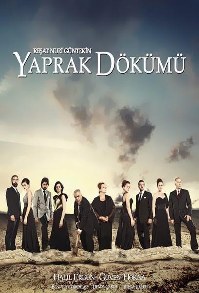 TV ratings for Yaprak Dökümü in Netherlands. Kanal D TV series