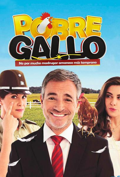 TV ratings for Pobre Gallo in the United States. Mega TV series