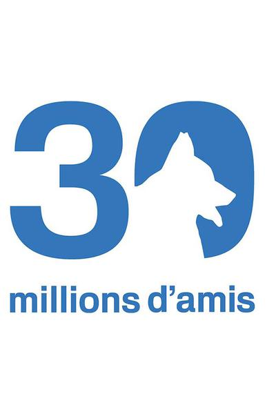TV ratings for 30 Millions D'amis in Spain. TF1 TV series