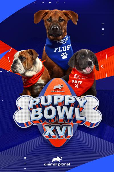 TV ratings for Puppy Bowl in Argentina. Animal Planet TV series
