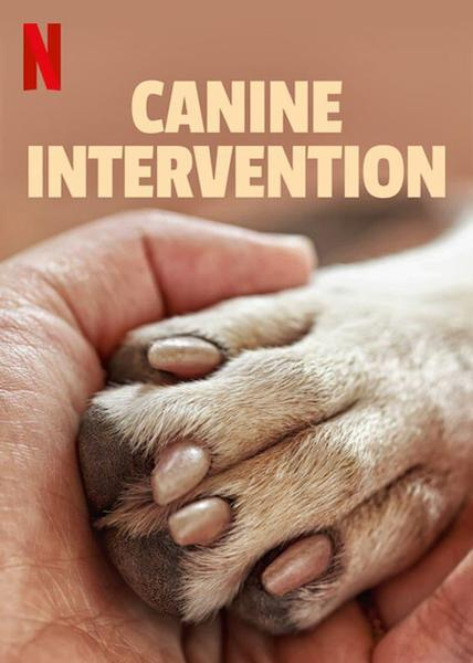 TV ratings for Canine Intervention in Chile. Netflix TV series