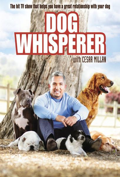 TV ratings for Dog Whisperer in India. National Geographic TV series