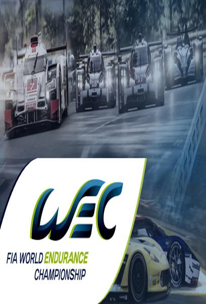 TV ratings for Fia World Endurance Championship in France. FOX TV series
