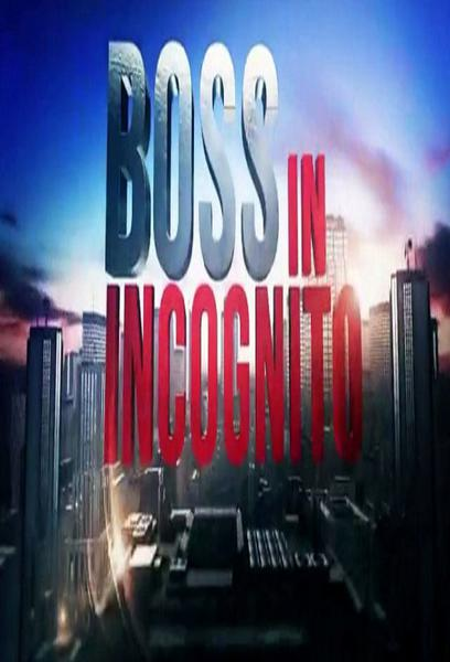 TV ratings for Boss In Incognito in the United States. Rai 2 TV series