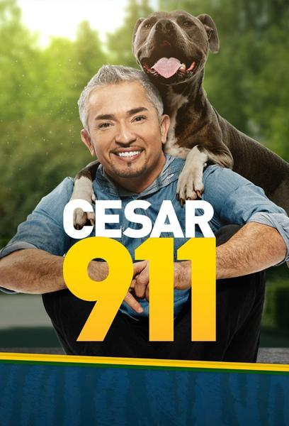 TV ratings for Cesar 911 in Norway. Nat Geo WILD TV series