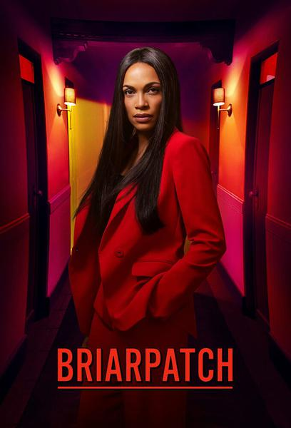 TV ratings for Briarpatch in Italy. USA Network TV series