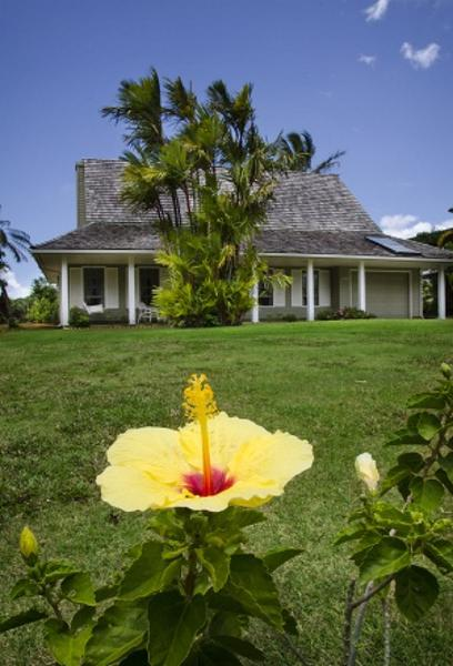 TV ratings for Hawaii Life in Netherlands. HGTV TV series
