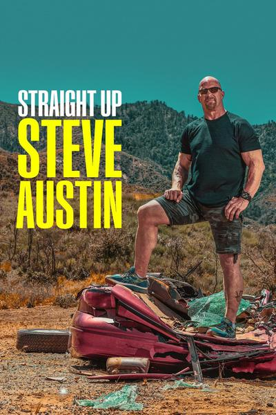 TV ratings for Straight Up Steve Austin in Netherlands. USA Network TV series