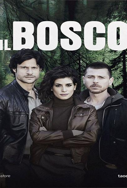 TV ratings for Il Bosco in France. Canale 5 TV series