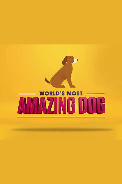 TV ratings for World's Most Amazing Dog in Norway. Facebook Watch TV series