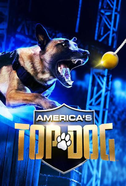 TV ratings for America's Top Dog in Norway. A&E TV series