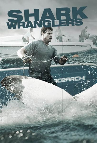 TV ratings for Shark Wranglers in Poland. History TV series