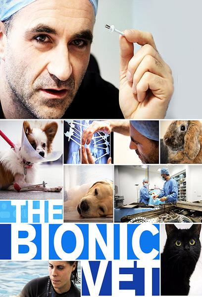 TV ratings for The Bionic Vet in Turkey. Smithsonian Channel TV series